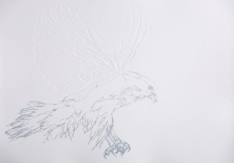 debossed print of hawk in flight