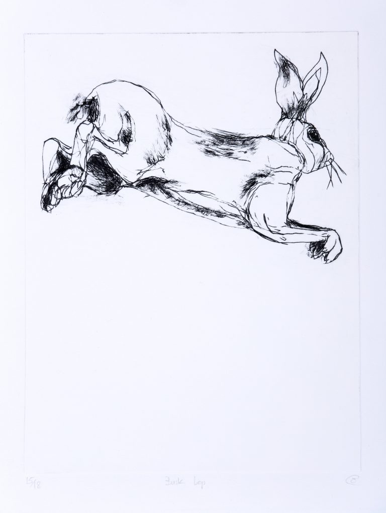 black and white Etching of leaping hare