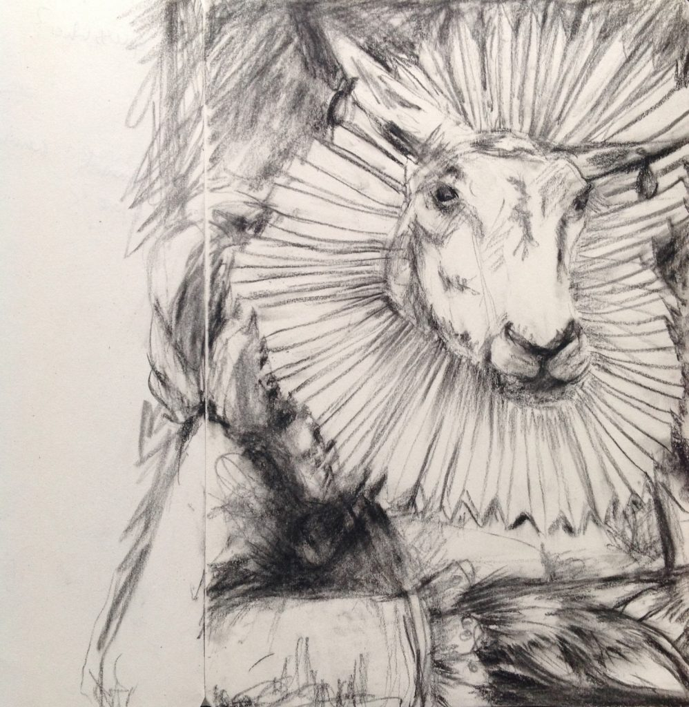 drawing of sheep in elizabthan costume
