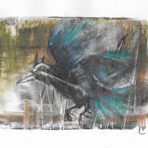 Original-Irish-Art-animal-Orlaith-Cullinane-rook2