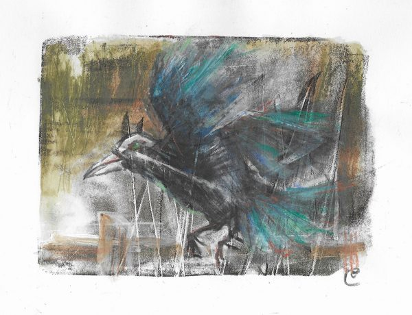 Original-Irish-Art-animal-Orlaith-Cullinane-rook2