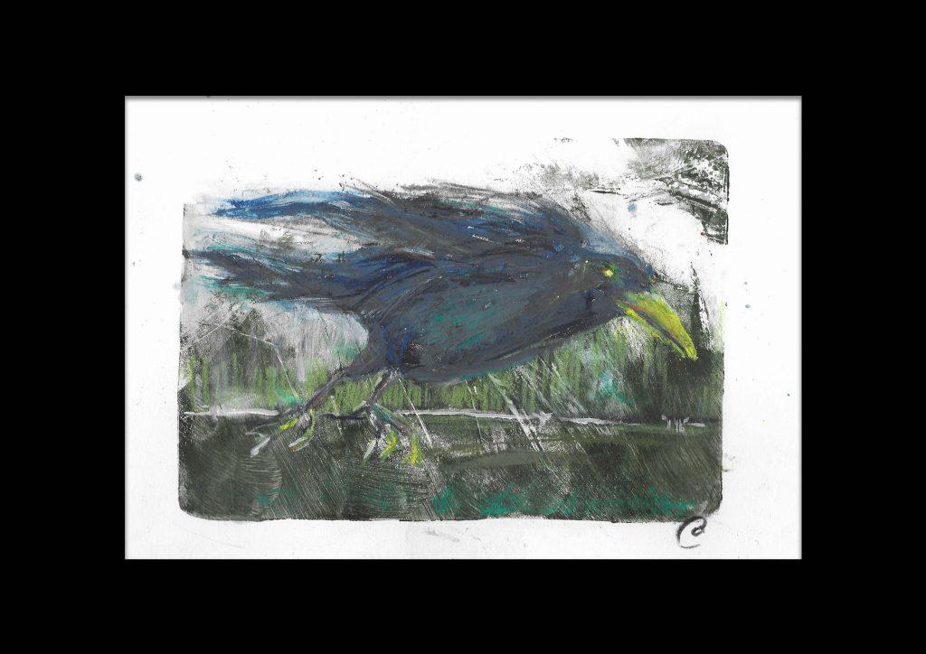 Original-Irish-Art-animal-Orlaith-Cullinane-rook1