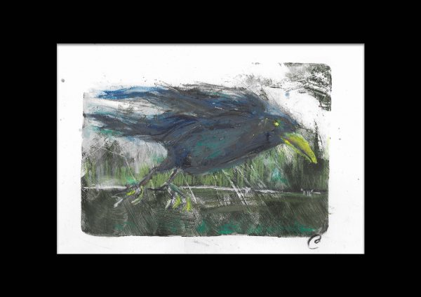 Original-Irish-Art-animal-Orlaith-Cullinane-rook1