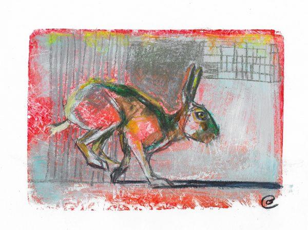 Original-Irish-Art-animal-Orlaith-Cullinane-crop6-hare